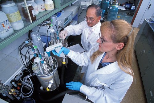 Agricultural Research Service chemist Tsung Min Kuo and technician Karen Ray convert vegetable oil into antifungal agents and other value-added bioproducts.