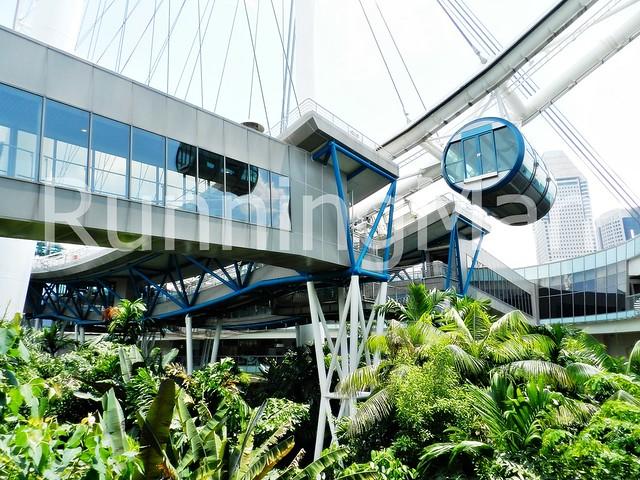 Singapore Flyer 02