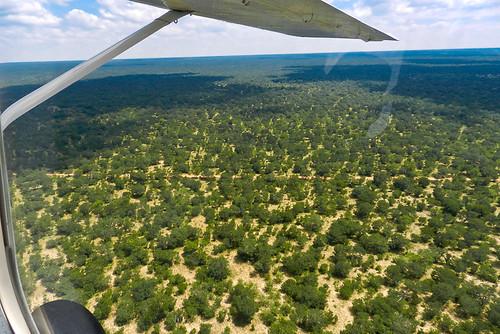 Sobrevolando África