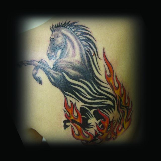 Erdoğan Çavdar Dövmeleri - Tribal At Dövmesi / Tribal Horse Tattoo