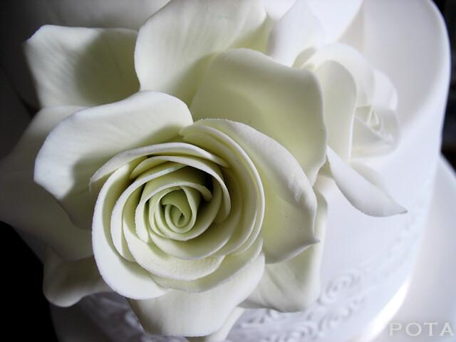 rose en sucre, gum paste rose