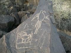 Petroglyphs National Monument (34)