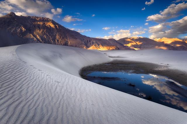 Himalayan Sands