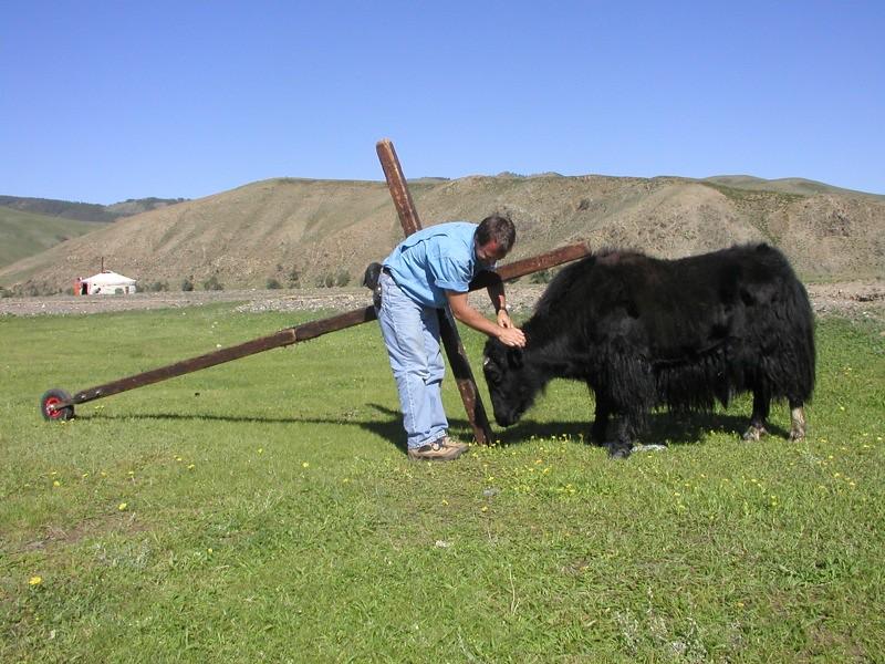 Mongolia Image9