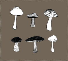 6 mushrooms