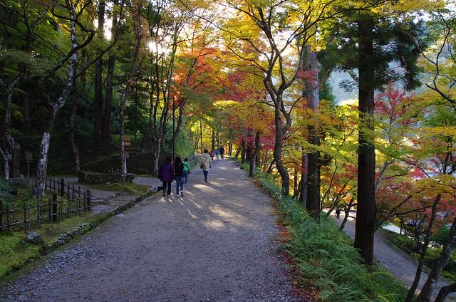 日本香嵐渓