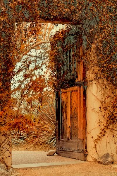 Garden Door - Autumn