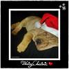 Happy-Dyn Christmas!!!  a tod@s!! :o))!! by Anadyn :o))!