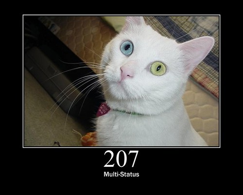 207 - Multi-Status