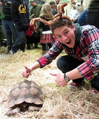 Tortoise at Petting Zoo