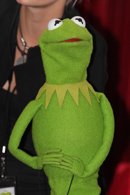 Kermit | Flickr - Photo Sharing!