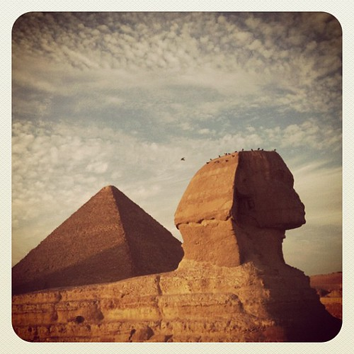 Great Sphinx of Giza in late afternoon light. #egypt