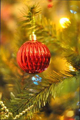 Feliz Navidad by jomudo