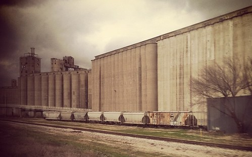 Grain-fed outside of Fort Worth