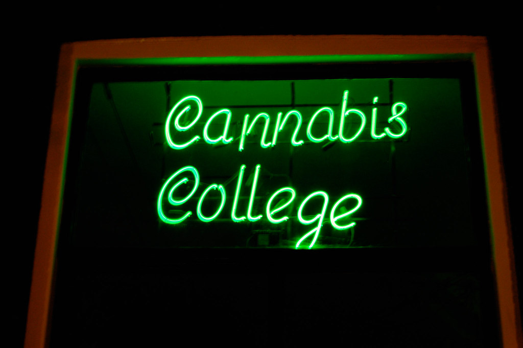 college dropout