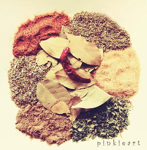 04-10Sep2011: Spices by b0y_m3nth4