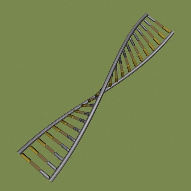 3D DNA Model | Flickr - Photo Sharing!