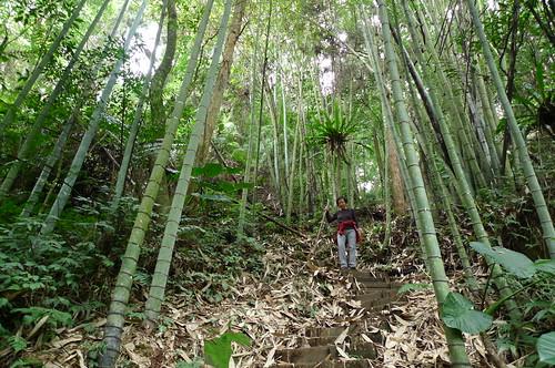 Rueli-Fenqihu Trail - Fenqihu, Taiwan
