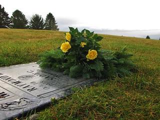 wreath & roses
