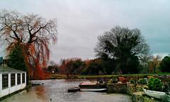 4/365+1 River Thames