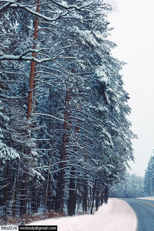 01_winter-[20111225_2]