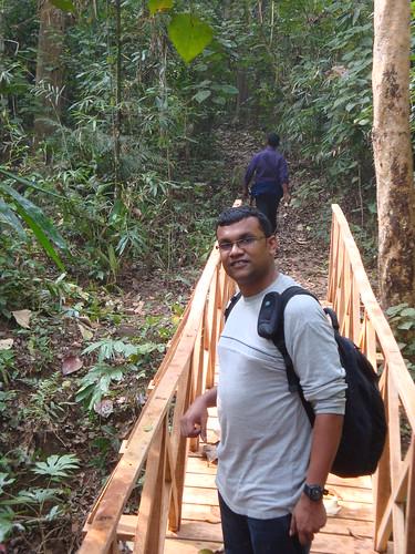 Lauachhara Forest