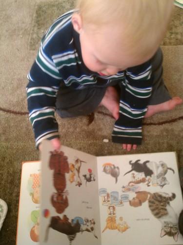 Reading by marymactavish
