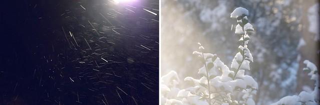 snowwwy