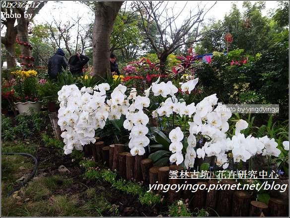 雲林古坑_花卉研究中心20120123_R0050651