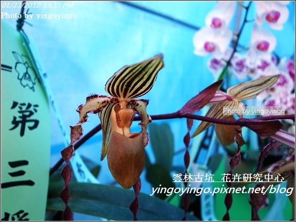 雲林古坑_花卉研究中心20120123_R0050689