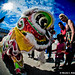 Chinese New Year Lion Dances @ Oceanic 1.29.12-17