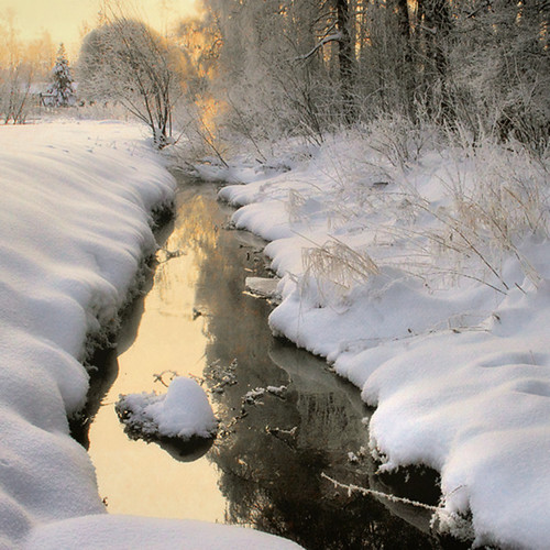 winter snow finland square snowy brook lumen greatphotographers theworldwelivein imagepoetry atsunrise naturepoetry absolutegoldenmasterpiece magicunicornverybest magicunicornmasterpiece sailsevenseas sailsevenseasmaster natureallovertheworld magicmomentsinyourlifelevel2 fotografíasenmarcargrupo8 magicmomemntsinyourlifelevel1