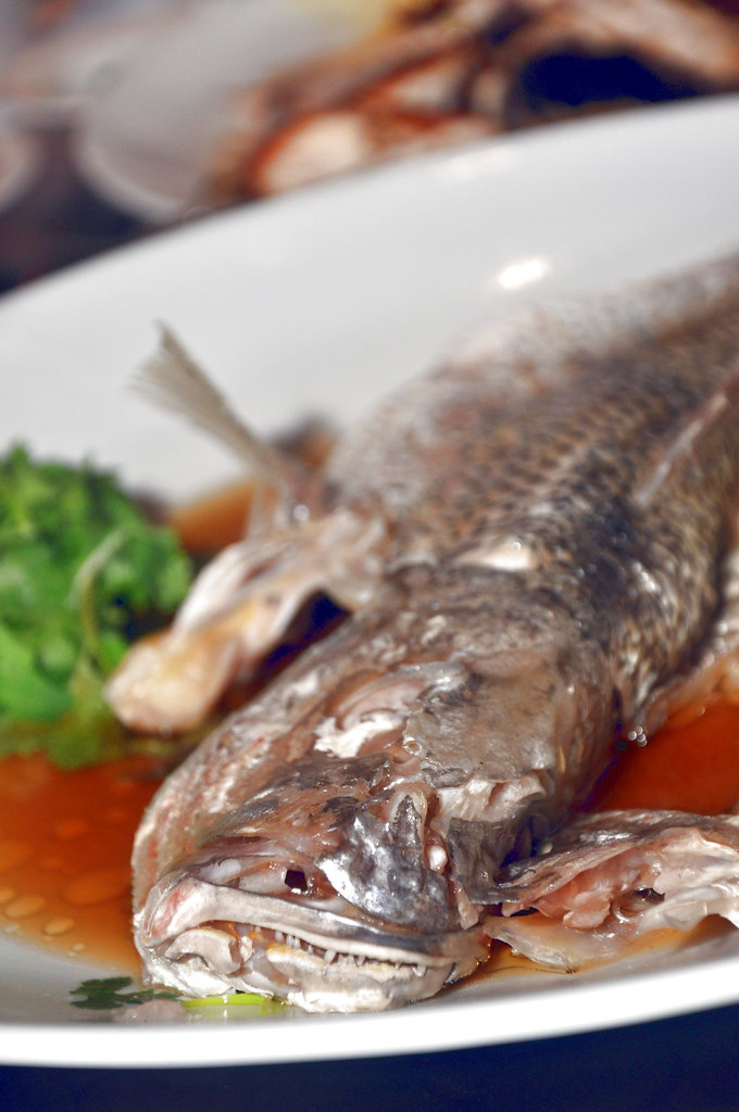 Steamed Red Snapper Fish with Superior Soys Sauce