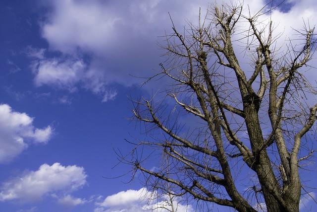 2012-02-04の空