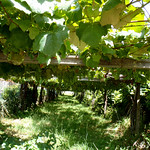 Fin de semana en O Grove, Pontevedra