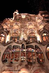 Fachada Casa Batlló. AFD-P52-S6