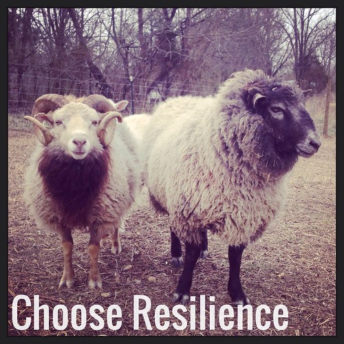 Choose resilience