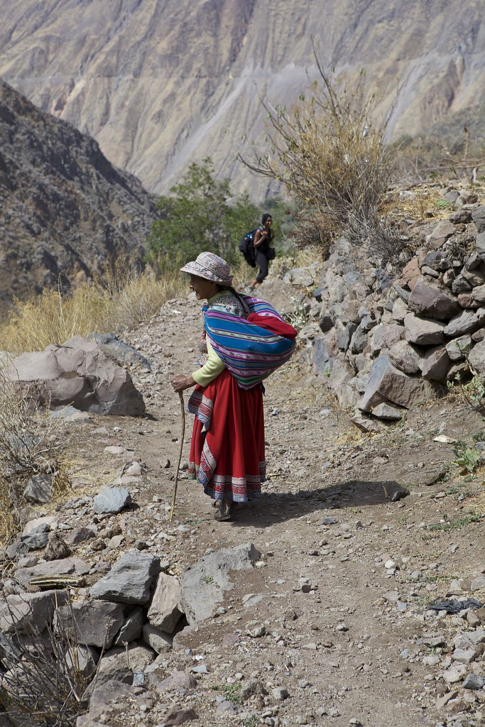 Sharing the path in Colca Canyon