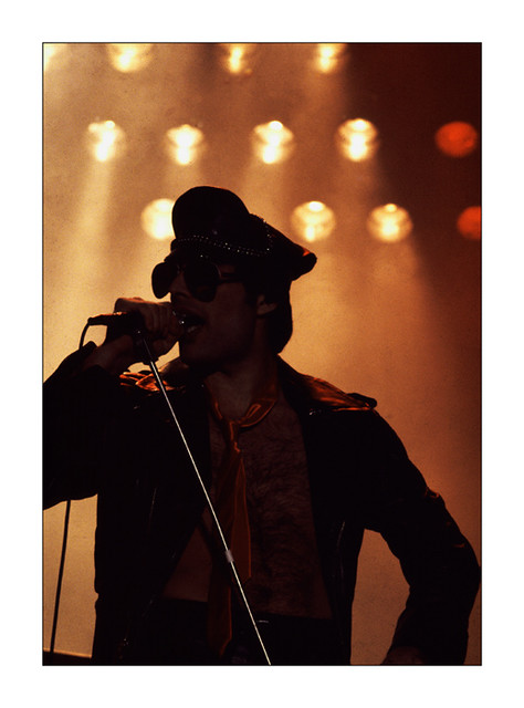 Image Result For Fredmercury
