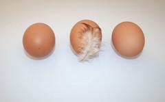 13 - Zutat Eier