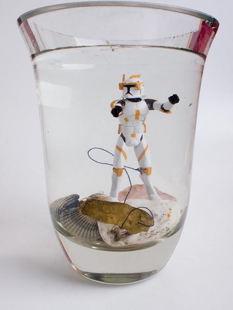 Projekt 52/2011, Woche 33: Unterwasserwelt