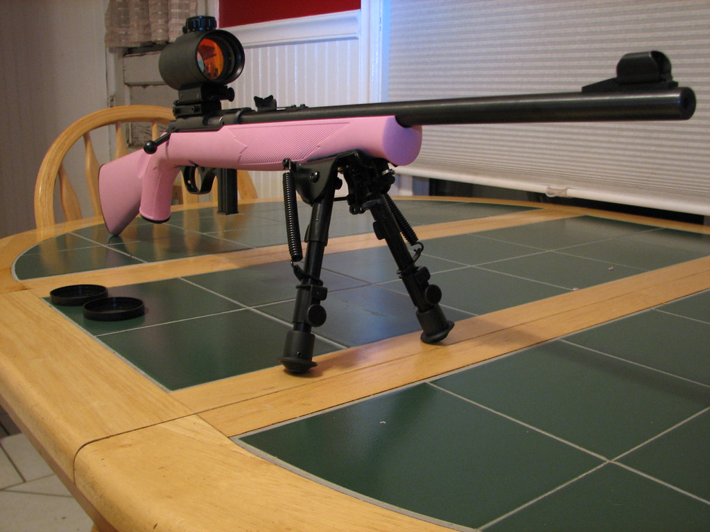 Mossberg plinkster? - .22 Rifle/Rimfire Discussion