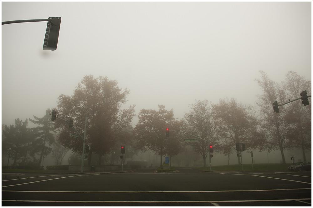 333 of 365 - Fog.