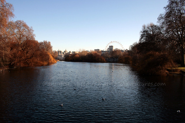 laghetto Lake St. James's Park Londra