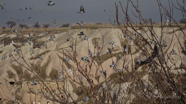 Cappadocia-15.jpg