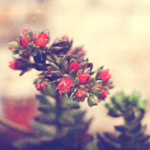 339.365: December 5