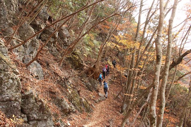 川乗山登山