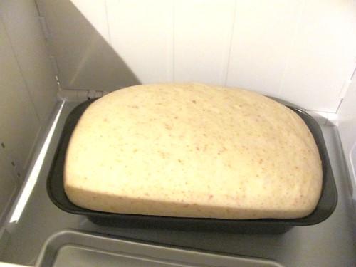 Brod & Taylor Folding Proofer & Country Wheat Sandwich Bread