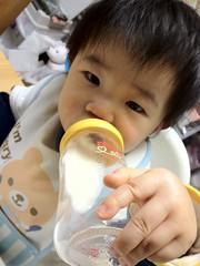 今日の片手哺乳瓶飲みとらちゃん。持ち方がいつもと違う。(2011/ 12/8)