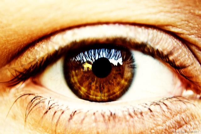 Braunes Auge